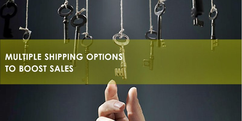 Multiple eCommerce Shipping Options and Solutions